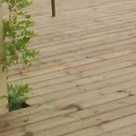 Lame de terrasse pin autoclave